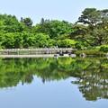 写真: Fresh Green Water