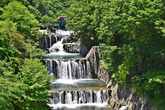 Photos: 新緑の滝