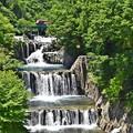 写真: 新緑の滝