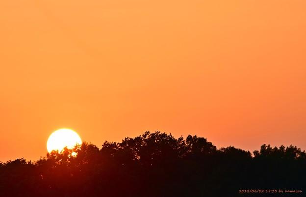 夕陽(180602)