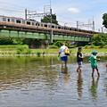 Photos: 川遊び