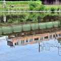Photos: 川面の中央線