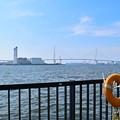 写真: 海が見える公園