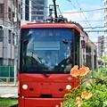 Photos: 花都電