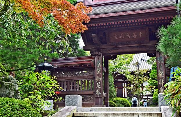 Photos: 秋色の山門