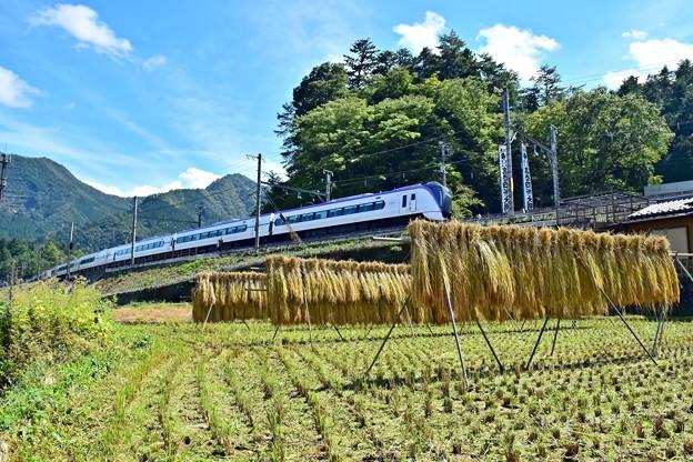 Photos: 山郷の秋(5)