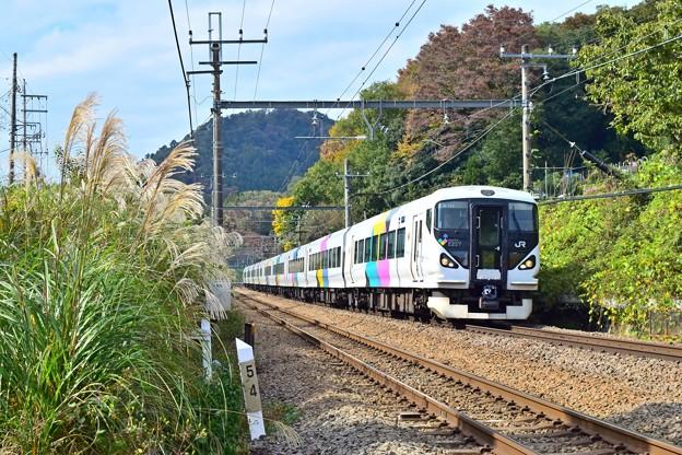 Photos: 秋色沿線(31)