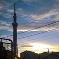 Photos: 車窓からの夕景