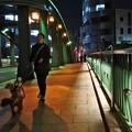 夜の柳橋散歩