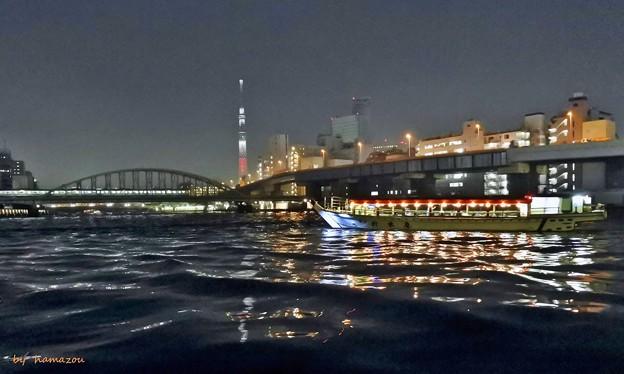 写真: 今宵は、屋形舟で