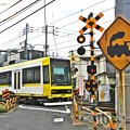 Photos: SL見っけ~♪