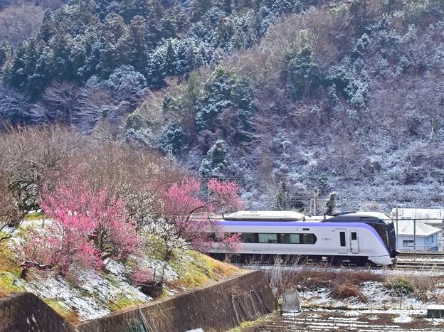 Photos: 梅郷特急