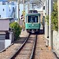 Photos: 江ノ電ゴトゴト