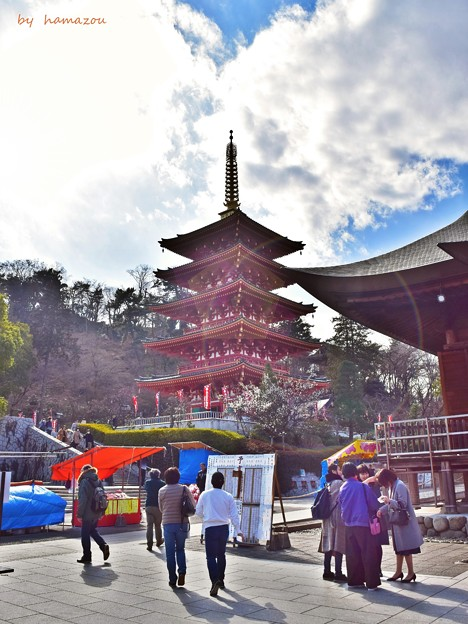 陽光の五重塔