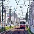 Photos: さくら都電