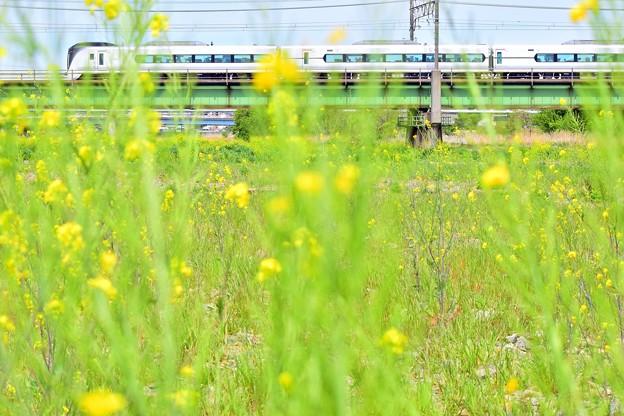 Photos: 春の車窓