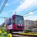 Photos: 花園都電