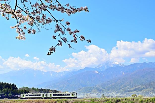 Photos: 高原列車春を行く