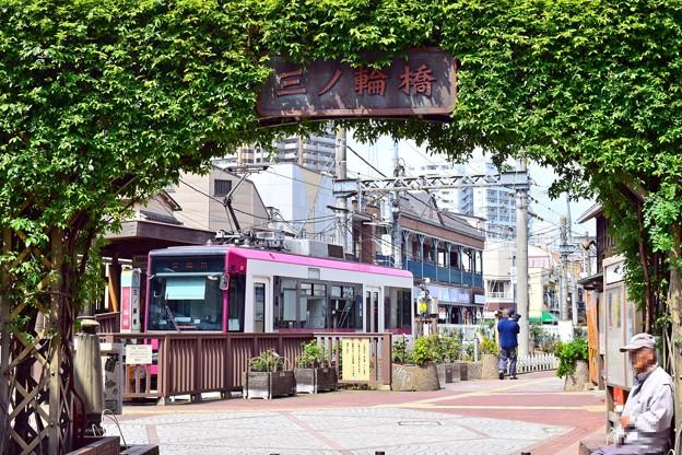 Photos: 昭和の和