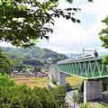 新緑の鉄橋