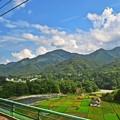 Photos: 夏色沿線(3)
