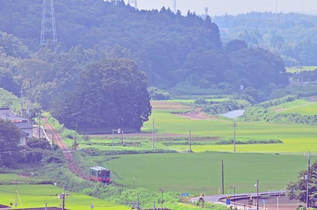 Photos: 田園を行く