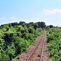 Photos: 線路は続くよ♪♪
