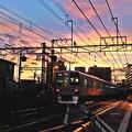 写真: ★夕陽の家路