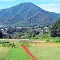 Photos: 山郷