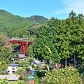 Photos: 紅い鉄橋