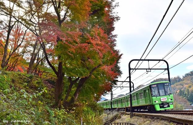 秋色沿線(59)