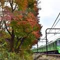 Photos: 秋色沿線(59)