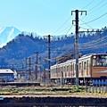 Photos: 黄金富士