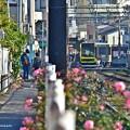 レールのある街