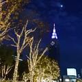 月夜の摩天楼