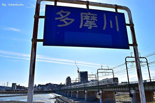 Photos: 多摩川