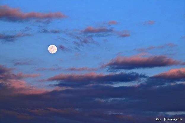 夕月(200208)