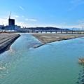 晴天の多摩川