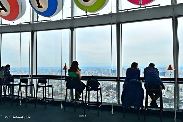 Tokyo city view(1)