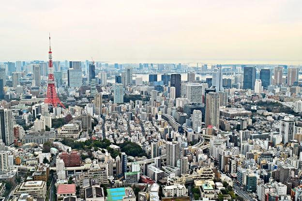 Tokyo City view(2)