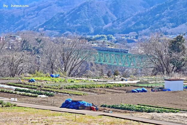 Photos: 早春の山郷