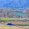 早春の山郷