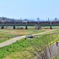 Photos: 春、河川敷