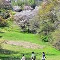 Photos: 春の丘陵(4)