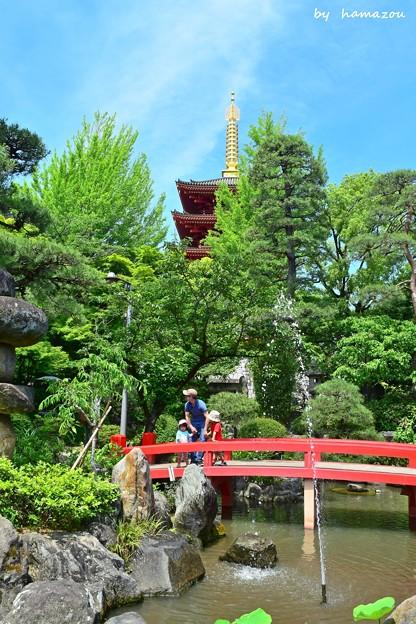 五重塔と弁天池