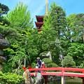 Photos: 五重塔と弁天池
