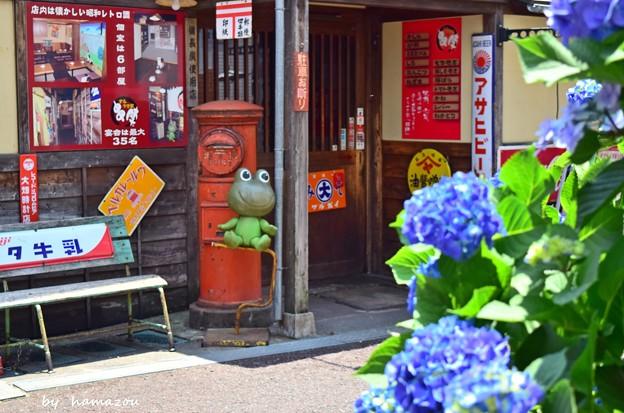 昭和のアジサイ横丁