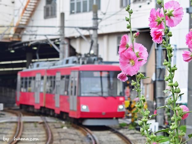 路面電車の街