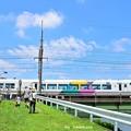 Photos: 夏色沿線(20)