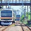 Photos: 猛暑日の列車交換